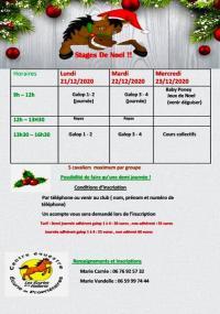 Planning des stages des vacances de Noel !